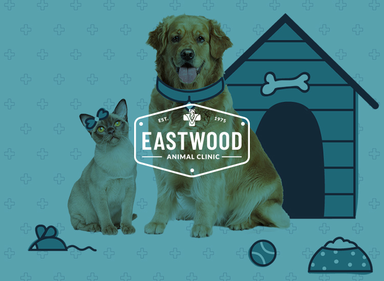 Eastwood Animal Clinic